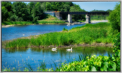 Rideau River at Carleton University