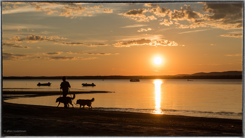 Dog Walking at Sunset in Constance Bay