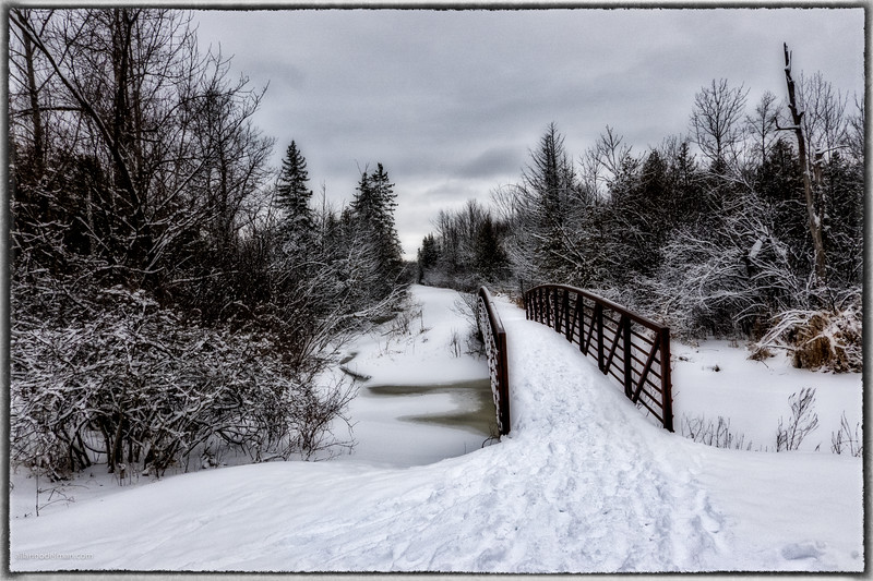 Cross canada Trail in Stittsville