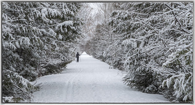 Cross Canada Trail in Stittsville Ontario