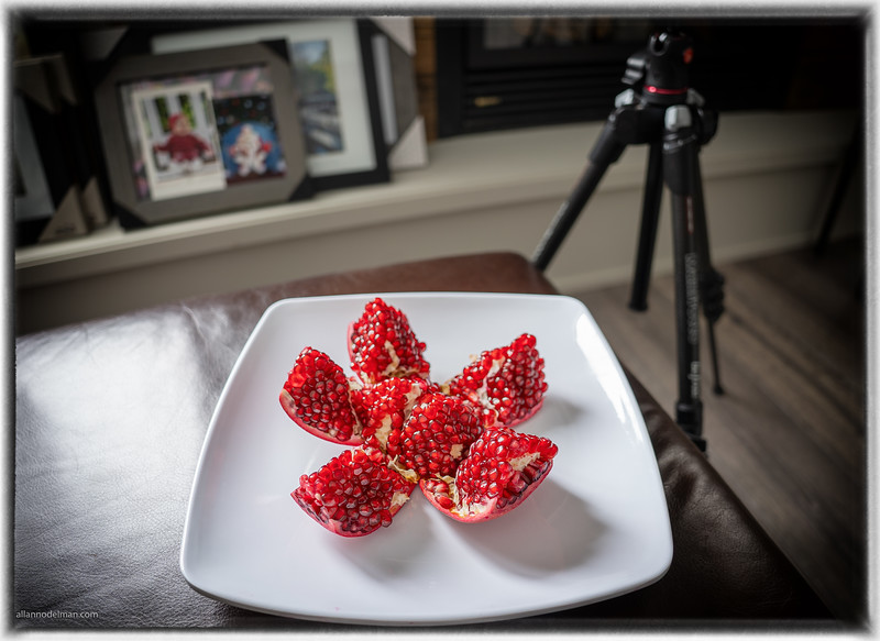 Testing Out a New Tamron 20mm lens on a Pomegranate
