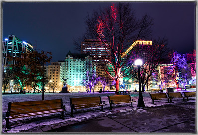 Seasonal Lights in Ottawa