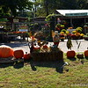 October 26, 2014<br /> <br /> Old Time Farmer's Market<br /> 1611 Hwy. 82 West<br /> Greenwood, MS