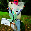 """BELLE OF THE BUTTERFLY"" - Sponsored by Lichterman Staff and Volunteers<br /> <br /> Lichterman Nature Center<br /> Memphis, TN"