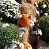 "October 8, 2011<br />  <br /> ""SCARECROW EXTRAVAGANZA"" 2011<br />  Wister Gardens<br />  Belzoni, MS"