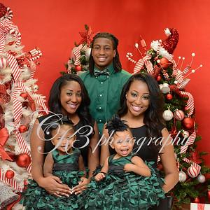 Scott Family Christmas Book