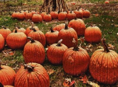 Pumpkins Art Work