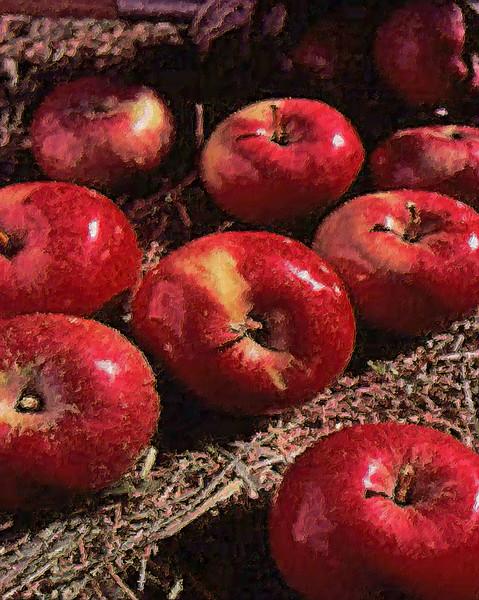 apples 2art work.