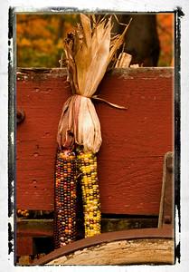 Corn Up