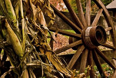 Corn And Wheel.