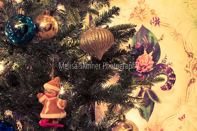 Ornaments #5