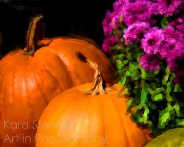 Pumpkin Mums