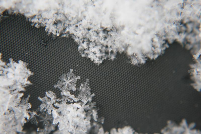 Snowflakes are so pretty.