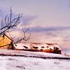 Ralph Sammarco- 2010- Sunset Barn COLOR112
