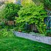 Backyard 2002 005
