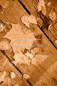 Sepia Fall Leaves on Old Board 6701.24
