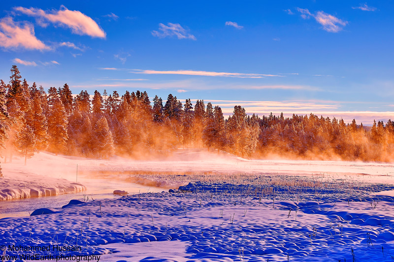 Frozen Land - Yellowstone National Park, WY