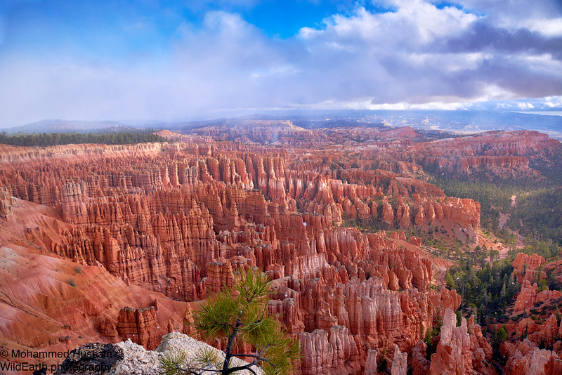 Bryce Canyon Hoodoos Amphitheater - Bryce Canyon National Park, UT