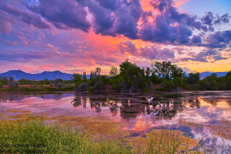 Sunset Over Walden Pond, Walden Ponds Wildlife Habitat, Boulder