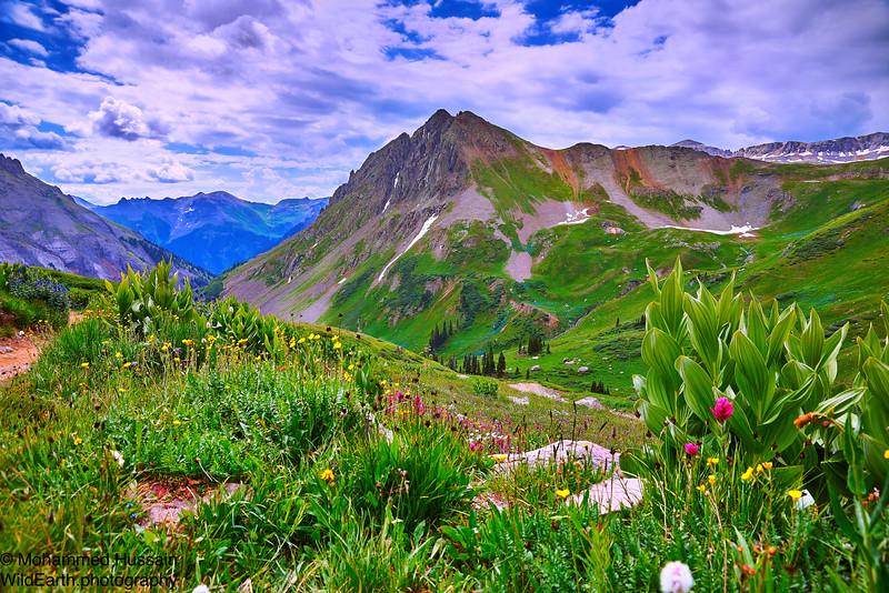 Stoney Mountain, Elevation 12698' Yankee Boy Basin, Ouray, CO