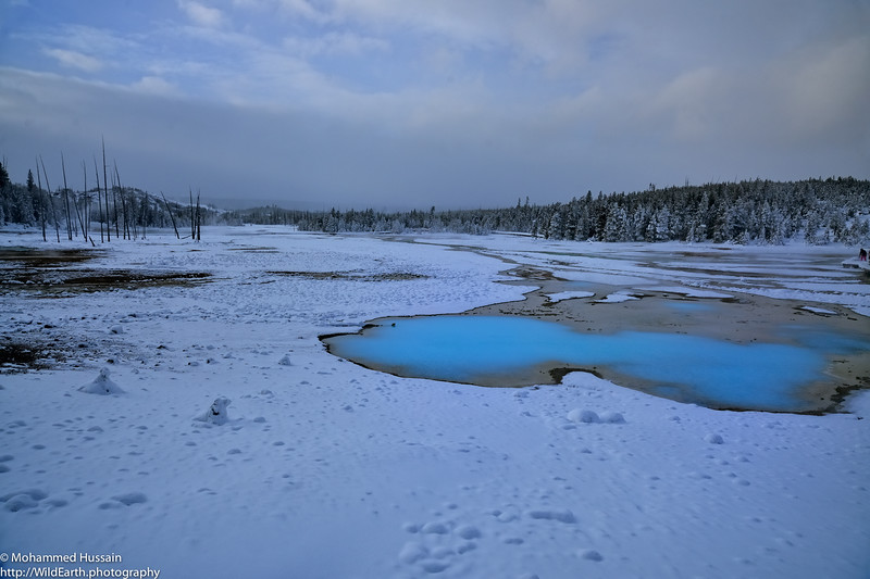 Porcelain Basin - Yellowstone National Park, WY