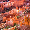 Hoodoos -  Bryce Canyon National Park, UT