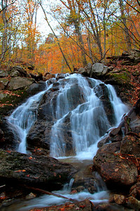 Royce Falls