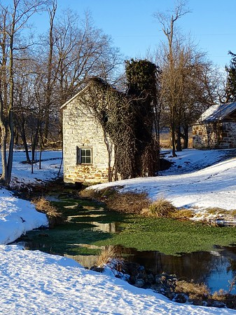 A Cold Spring is Still Too Warm to Freeze