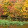 """Black River<br /> """"Color""""<br /> 10-20-10"""