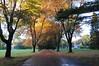 autumn_2012_013