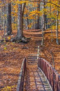 Footbridge and Steps