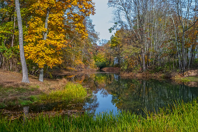 Scenic Autumn Pond
