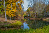 Scenic Autumn Pond