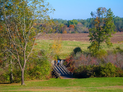 Monmouth Battlefield Hike
