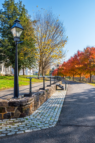 Park Avenue Autumn