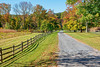Rural Autumn Road