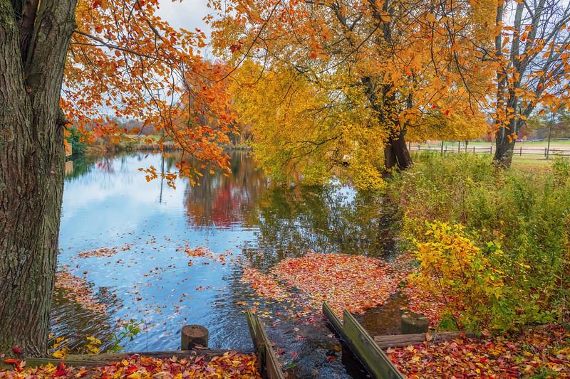 Big Brook Autumn