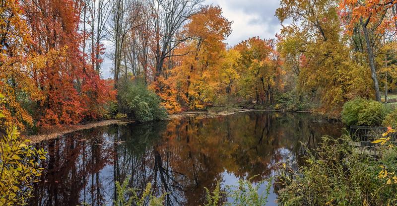 Big Brook Pond Panorama