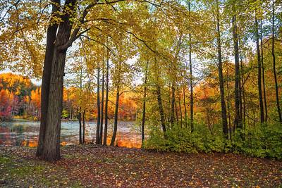 Lake Land Colors