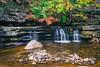 Autumn Falls in Stream