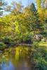Autumn Pond Landscape