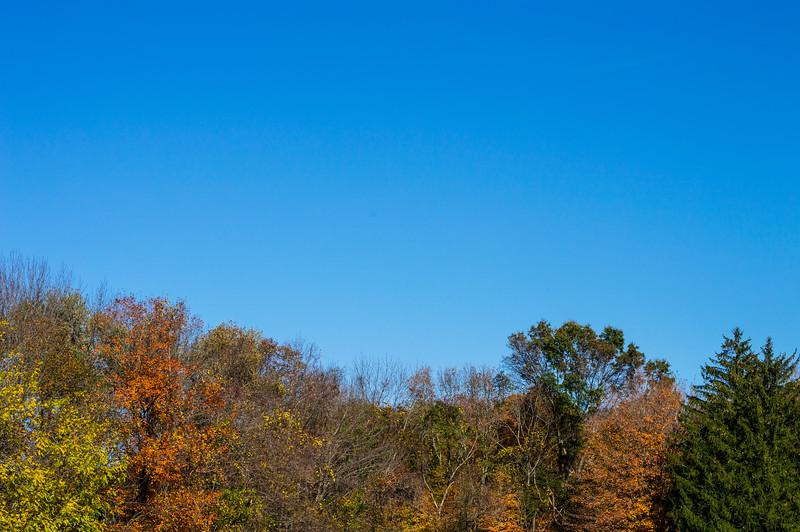 Fall Blue Sky