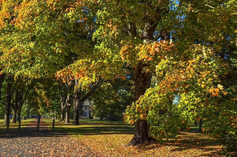 Autumn Washington Crossing