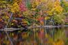 Autumn Pond Reflections