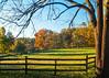 Framed Autumn Scene