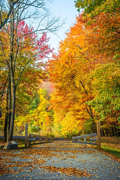 Autumn Park Entrance