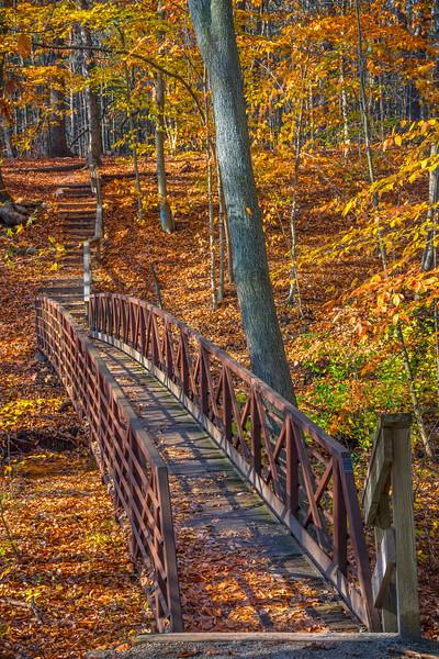 Footbridge and Foliage