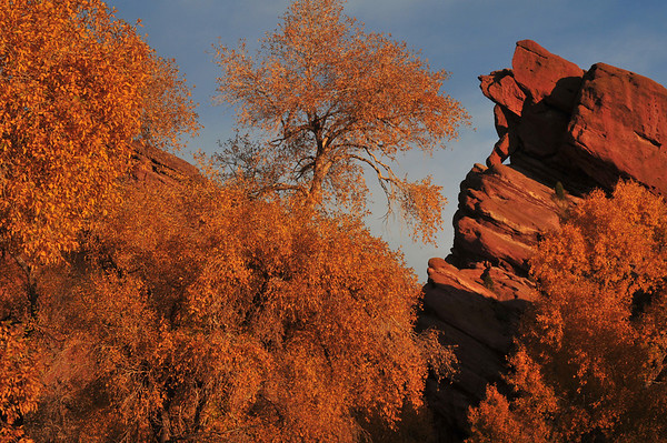 Autumn at Red Rocks