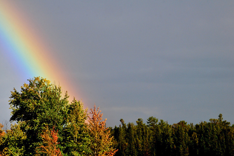 gold at the foot of the rainbow