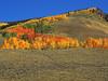 Teocalli Ridge